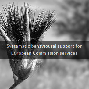 Systemartic behavioural support for European Commisssion services
