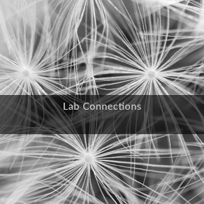 lab connections