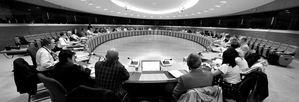 View of Schuman Room, Berlaymont Building, with the event taking place.