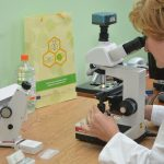 2-4-testing-of-bee-diseases-at-the-faculty-of-agriculture-novi-sad-serbia-limehoney