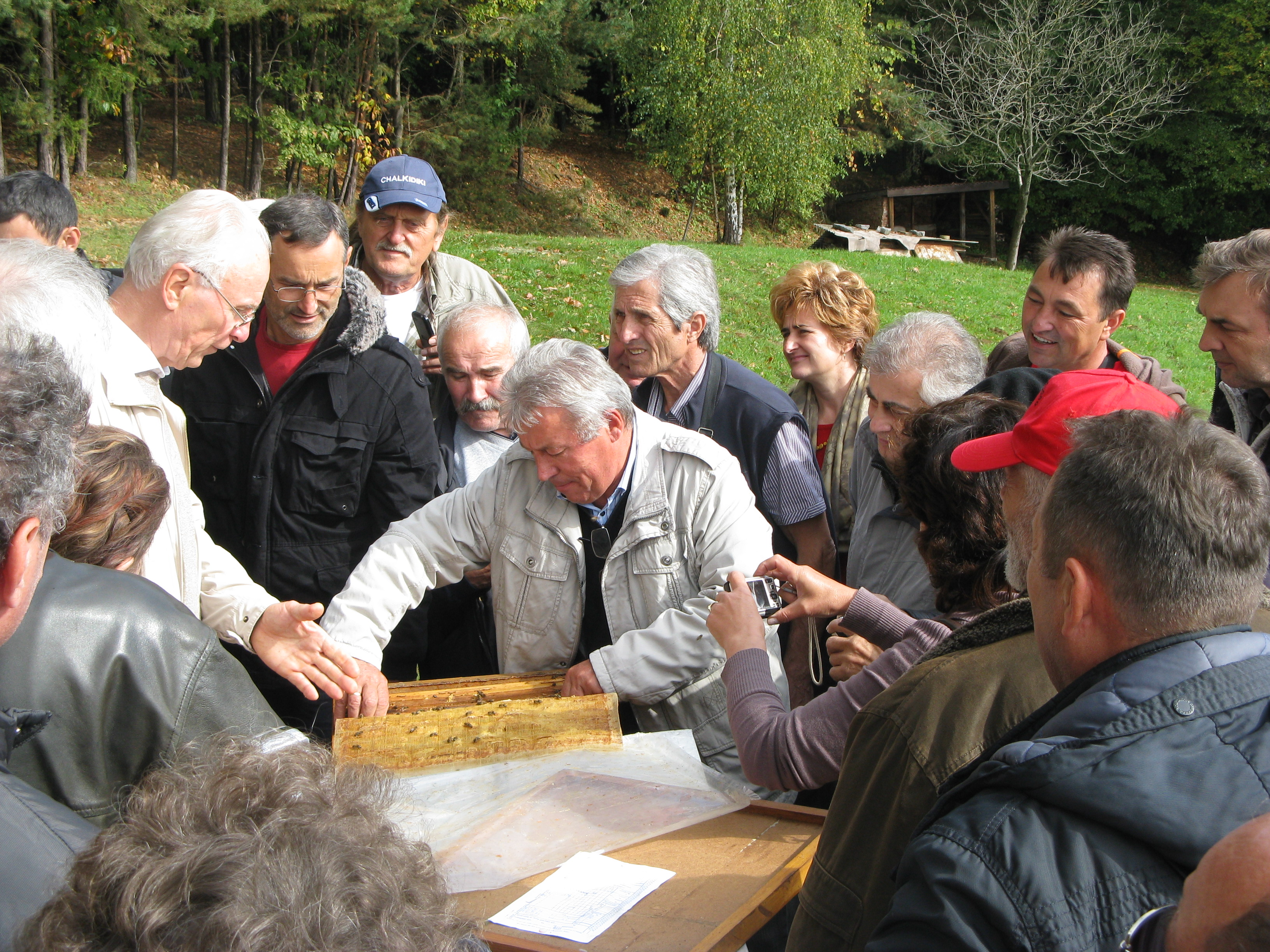 2-5-beekeepers-in-honey-bees-farm-best-practice-examples-from-serbia-and-austria-limehoney